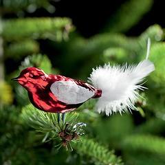 3 Lauschaer Weihnachtsamseln Rot
