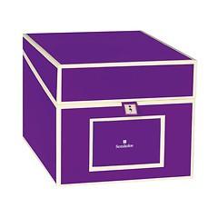 Semikolon CD Box Pflaume