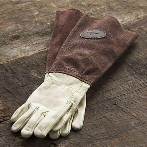 Bradleys Rosenhandschuhe brown Größe 7,5