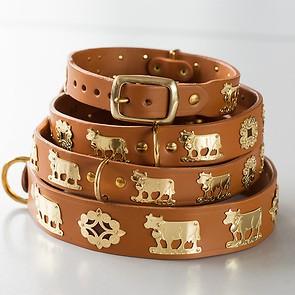 Appenzeller Halsband