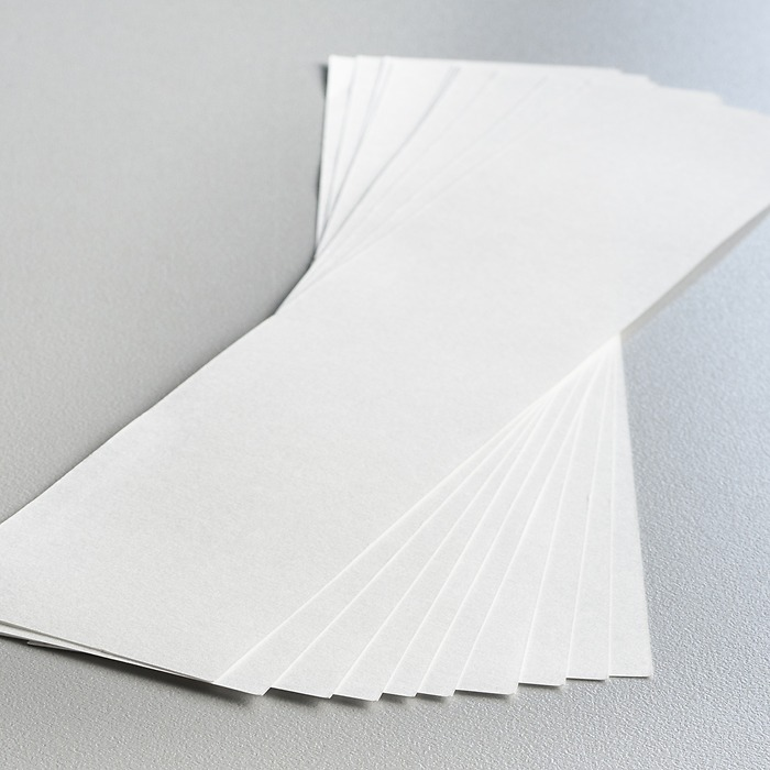 Löschpapier für Löscher Buche
