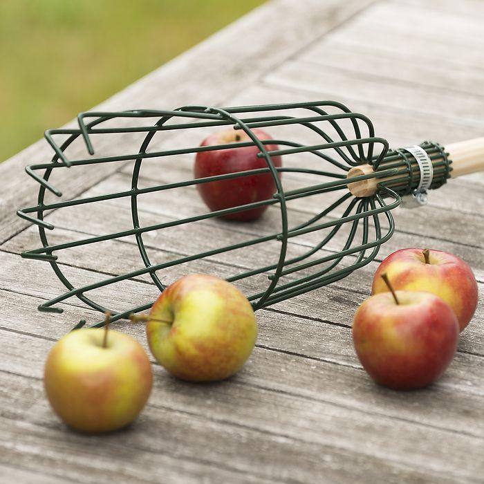 Burgon & Ball Apple Picker