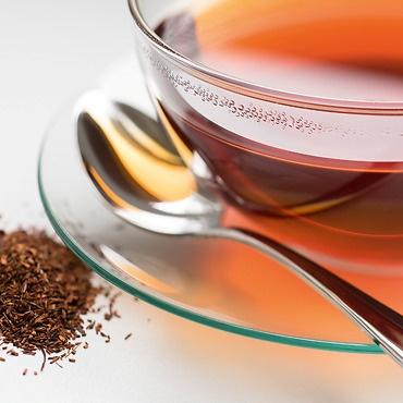 Sunbird Tee